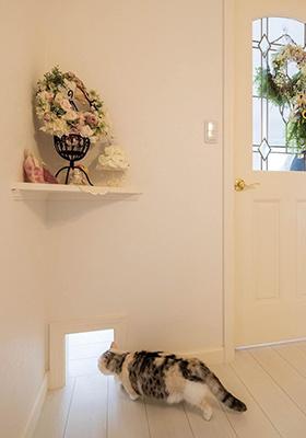 ロビンスジャパン 猫と暮らす家づくり