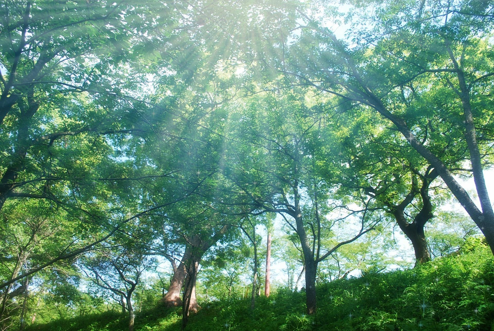 セカンドリビング-自然との一体感を楽しむ