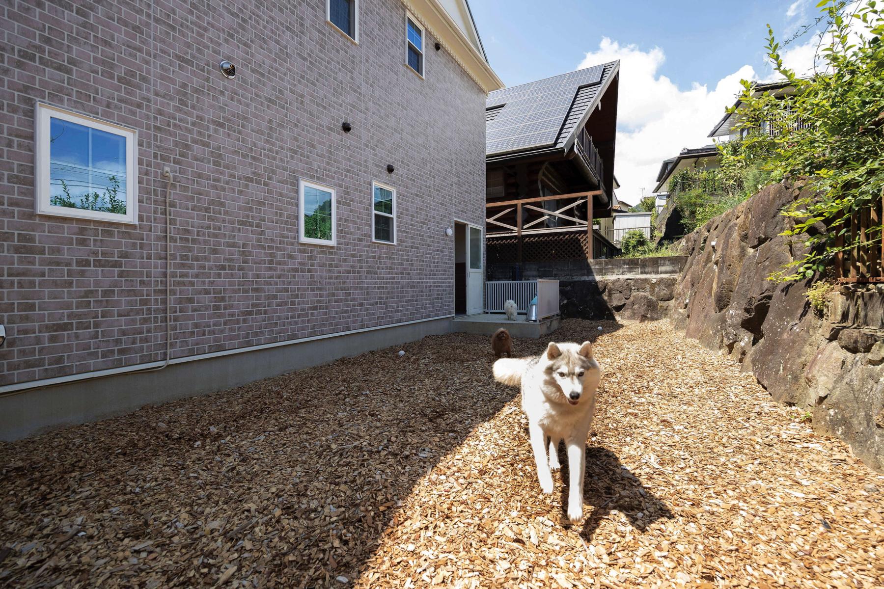 建築家が腕をふるった企画プランでローコストに輸入住宅を!